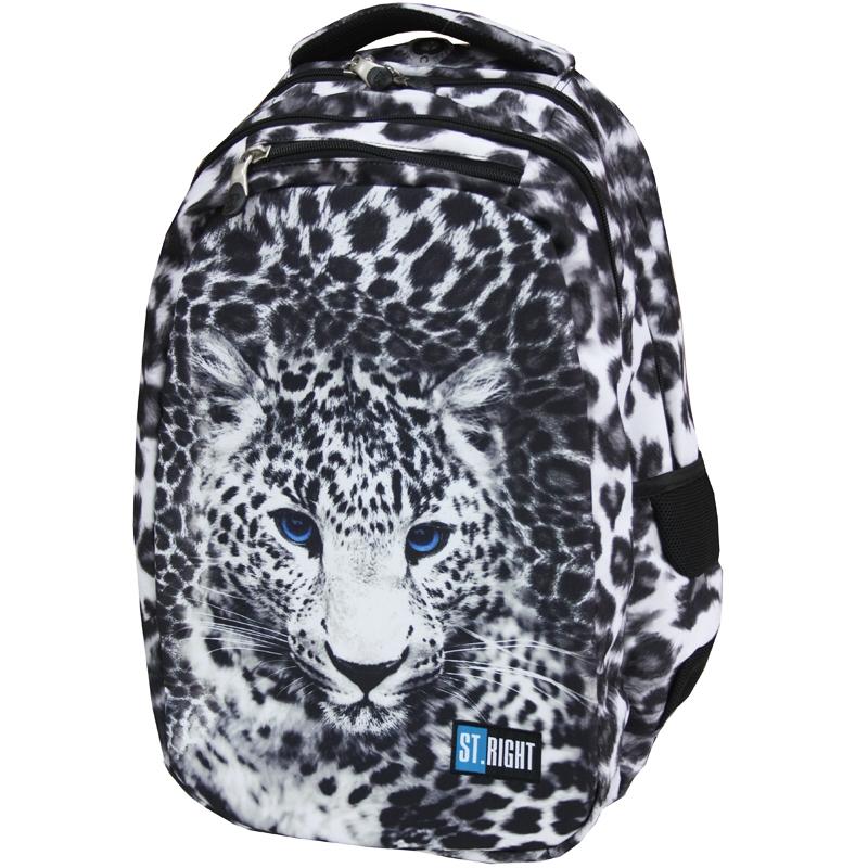 3b94999634666 Dwukomorowy plecak szkolny St.Right 26 L, Panther