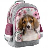 Lekki plecak szkolny z pieskiem beagle, Paso