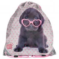 Worek na obuwie z labradorem w okularach, Paso Studio Pets