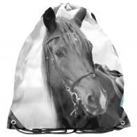 Worek na obuwie Horse/Koń PP21KE-712, PASO