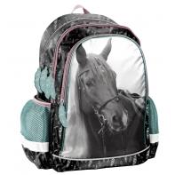 Plecak szkolny Horse PP21KE-081, PASO