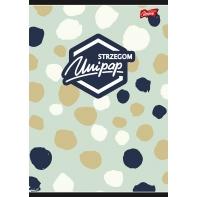Zeszyt A5 Unipap, 96 kartek kratka, wzory dziewczęce